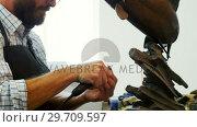 Купить «Craftsman working on fish sculpture 4k», видеоролик № 29709597, снято 30 мая 2017 г. (c) Wavebreak Media / Фотобанк Лори