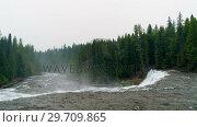 Купить «River flowing through green forest 4k», видеоролик № 29709865, снято 3 августа 2017 г. (c) Wavebreak Media / Фотобанк Лори