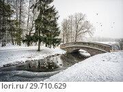 Купить «Утки зимой Ducks swim in an ice-hole», фото № 29710629, снято 12 января 2018 г. (c) Baturina Yuliya / Фотобанк Лори