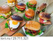 Купить «Set of tasty hamburgers and cheeseburgers», фото № 29711321, снято 22 июля 2019 г. (c) Яков Филимонов / Фотобанк Лори