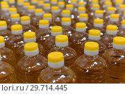 Купить «Lot of plastic bottles with sunflower oil», фото № 29714445, снято 14 января 2019 г. (c) Володина Ольга / Фотобанк Лори