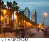 Купить «Palm alley on waterfront in Barcelona in summer evening», фото № 29730013, снято 27 августа 2017 г. (c) Яков Филимонов / Фотобанк Лори