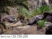 Купить «Hiking in Gorge Masca. Volcanic island. Mountains of the island of Tenerife, Canary Island, Spain.», фото № 29730205, снято 27 декабря 2017 г. (c) Konstantin Shabalin / Фотобанк Лори