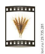 Купить «Golden spikelet. 3d render. Film strip.», фото № 29735281, снято 17 сентября 2019 г. (c) Guru3d / Фотобанк Лори