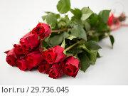 Купить «close up of red roses bunch», фото № 29736045, снято 8 февраля 2018 г. (c) Syda Productions / Фотобанк Лори