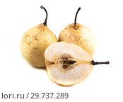 Купить «Три жёлтые груши на белом фоне», фото № 29737289, снято 2 сентября 2018 г. (c) Литвяк Игорь / Фотобанк Лори