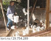 Female farmer feeding fancy pigeons. Стоковое фото, фотограф Яков Филимонов / Фотобанк Лори