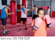 Купить «Girl in gloves posing during boxing training at gym», фото № 29754529, снято 12 апреля 2017 г. (c) Яков Филимонов / Фотобанк Лори