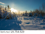 Купить «Winter snow landscape in the rays of the setting sun on December day», фото № 29754929, снято 29 декабря 2018 г. (c) Валерий Смирнов / Фотобанк Лори