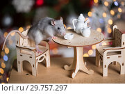 Купить «Gray rat symbol of the new year», фото № 29757297, снято 19 января 2019 г. (c) Типляшина Евгения / Фотобанк Лори