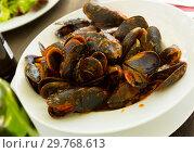 Купить «Mussels with tomato sauce», фото № 29768613, снято 26 марта 2019 г. (c) Яков Филимонов / Фотобанк Лори