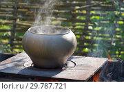 Купить «Приготовление пищи в чугунке на огне», фото № 29787721, снято 9 августа 2018 г. (c) Елена Коромыслова / Фотобанк Лори