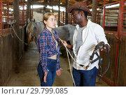 Купить «Girl and man having emotional discussion at stable», фото № 29799085, снято 2 октября 2018 г. (c) Яков Филимонов / Фотобанк Лори