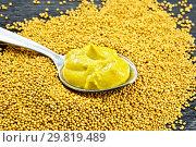 Купить «Горчичный соус в ложке на семенах», фото № 29819489, снято 26 июня 2017 г. (c) Резеда Костылева / Фотобанк Лори