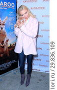 Купить «Los Angeles Film Premiere and VIP Reception of 'Kangaroo: A Love-Hate Story' - Arrivals Featuring: Katja Glieson Where: Beverly Hills, California, United States When: 23 Jan 2018 Credit: WENN.com», фото № 29836109, снято 23 января 2018 г. (c) age Fotostock / Фотобанк Лори