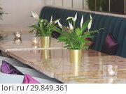 Купить «Живые цветы и свечи на столиках в кафе», фото № 29849361, снято 2 июля 2018 г. (c) Милана Харитонова / Фотобанк Лори