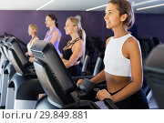 Купить «Slender athletic girls running on treadmill in fitness club», фото № 29849881, снято 26 июля 2017 г. (c) Яков Филимонов / Фотобанк Лори