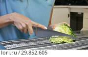 Купить «Close up video of female hands chopping cabbage on a board lying on the kitchen table. Clean eating, dieting, vegetarian food concept», видеоролик № 29852605, снято 30 января 2019 г. (c) Ольга Балынская / Фотобанк Лори