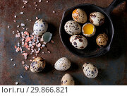 Купить «Whole and broken quail eggs with yolk in shell and pink sea salt crystal in small iron cast pan over old rusty texture metal background. Top view with space», фото № 29866821, снято 12 июля 2020 г. (c) age Fotostock / Фотобанк Лори