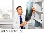 Купить «doctor with x-ray scan at hospital», фото № 29874761, снято 3 февраля 2015 г. (c) Syda Productions / Фотобанк Лори