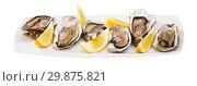 Купить «Opened raw oysters with lemon», фото № 29875821, снято 23 июля 2019 г. (c) Яков Филимонов / Фотобанк Лори