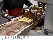 Купить «candies making by chocolate coating machine», фото № 29890017, снято 4 декабря 2018 г. (c) Syda Productions / Фотобанк Лори