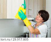 Купить «senior woman cleaning», фото № 29917805, снято 4 июля 2020 г. (c) Яков Филимонов / Фотобанк Лори