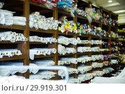 Купить «Cloth rolls in fabric store», фото № 29919301, снято 2 марта 2018 г. (c) Яков Филимонов / Фотобанк Лори