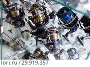 Image of stand with new good baitcasting reel. Стоковое фото, фотограф Яков Филимонов / Фотобанк Лори