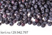 Купить «Blueberry or bilberry isolated on white background cutout», фото № 29942797, снято 15 октября 2019 г. (c) Яков Филимонов / Фотобанк Лори
