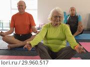 Senior people doing yoga in fitness studio. Стоковое фото, агентство Wavebreak Media / Фотобанк Лори