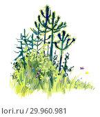 Forest miniatures. Gouache illustration. Стоковая иллюстрация, иллюстратор Мария Кутузова / Фотобанк Лори