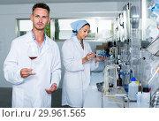 Купить «Attentive glad man testing wine qualities», фото № 29961565, снято 12 декабря 2019 г. (c) Яков Филимонов / Фотобанк Лори