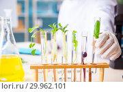 Купить «Male biotechnology scientist chemist working in the lab», фото № 29962101, снято 20 ноября 2018 г. (c) Elnur / Фотобанк Лори