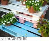 Купить «Подставка для цветов из раскрашенных деревянных поддонов», фото № 29976881, снято 20 августа 2018 г. (c) Вячеслав Палес / Фотобанк Лори