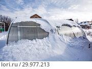 Купить «Заметённая снегом теплица из поликарбоната на даче. Бердск, Новосибирская область, Западная Сибирь, Россия», фото № 29977213, снято 16 февраля 2019 г. (c) Евгений Мухортов / Фотобанк Лори