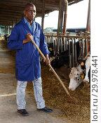 Купить «Male working on dairy farm», фото № 29978441, снято 8 августа 2018 г. (c) Яков Филимонов / Фотобанк Лори