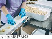 Купить «process of making buuza», фото № 29979953, снято 7 февраля 2019 г. (c) Mark Agnor / Фотобанк Лори