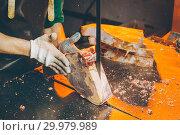 Купить «meat cutting factory», фото № 29979989, снято 7 февраля 2019 г. (c) Mark Agnor / Фотобанк Лори