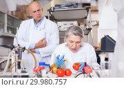 Купить «Scientists injecting additives into tomatoes», фото № 29980757, снято 24 января 2019 г. (c) Яков Филимонов / Фотобанк Лори