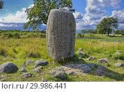 Купить «Karlevi Runestone near Färjestaden, Oland, Sweden.», фото № 29986441, снято 21 августа 2014 г. (c) easy Fotostock / Фотобанк Лори