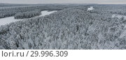 Купить «Amazing Wild Olanga River In Frozen Forest. Really Snowly Winter On The North. Aerial,  Paanajärvi, Karelia, Russia», фото № 29996309, снято 9 февраля 2019 г. (c) Кирилл Трифонов / Фотобанк Лори