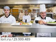 Купить «Smiling chef putting salad on order station», фото № 29999489, снято 1 августа 2012 г. (c) Wavebreak Media / Фотобанк Лори