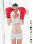 Dynamic fit brown haired model in sportswear wearing red boxing gloves. Стоковое фото, агентство Wavebreak Media / Фотобанк Лори