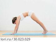 Купить «Sporty woman doing the Downward Facing Dog pose», фото № 30023029, снято 16 июля 2013 г. (c) Wavebreak Media / Фотобанк Лори