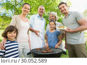 Extended family standing at barbecuing in park. Стоковое фото, агентство Wavebreak Media / Фотобанк Лори
