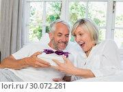 Купить «Mature man giving surprised woman gift box at home», фото № 30072281, снято 6 декабря 2013 г. (c) Wavebreak Media / Фотобанк Лори