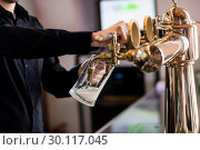 Купить «Bartender pouring beer from faucet in pint glass», фото № 30117045, снято 6 апреля 2016 г. (c) Wavebreak Media / Фотобанк Лори