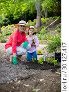 Купить «Grandmother and granddaughter gardening», фото № 30127417, снято 10 ноября 2016 г. (c) Wavebreak Media / Фотобанк Лори