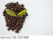 Купить «Roasted coffee beans arranged with leafs», фото № 30137949, снято 6 октября 2016 г. (c) Wavebreak Media / Фотобанк Лори
